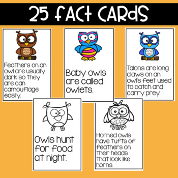 Owls: Fact and Opinion