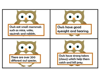 Owls-Fact and Opinion Sorting Cards
