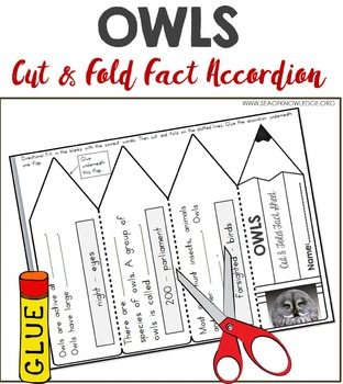 Owls Facts Foldable Accordion