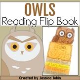 Owls Reading Flip Book - Digital With Google Slides