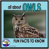 Owls PowerPoint - Informational Text and Fun Facts Distance Learning