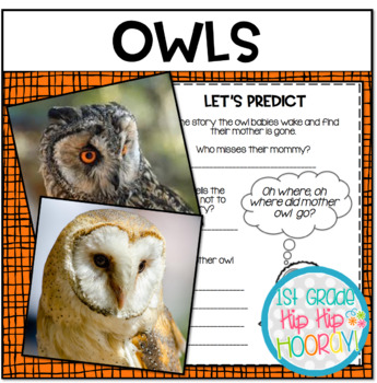 Owls...Informational Text, Read, Writing, Research!