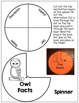 OWLS INTERACTIVE LAPBOOK OR NOTEBOOK