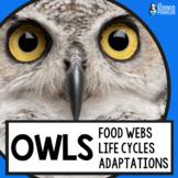 Owls Life Science Unit