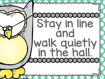 Owls Manners and Expectations Posters {Editable}