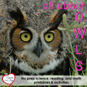 Owls NO PREP Fall/October Mini Unit