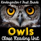 Owls Nonfiction Close Reading for Kindergarten & First Grade- Informational Text