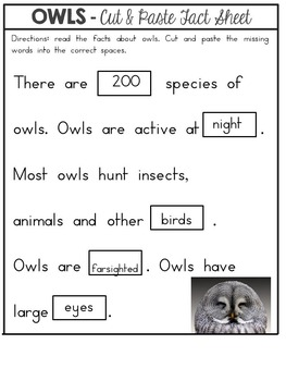 Owls Nonfiction Facts Cut and Paste Worksheet
