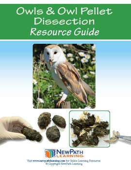 Owls & Owl Pellet Dissection Resource Guide - Preview Sample