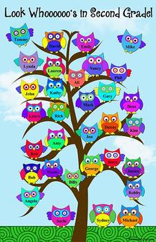 Owls Posters for Grades K-4
