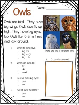 Reading comprehension worksheets grade 1 free