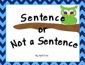 Owls Sentence Scoot