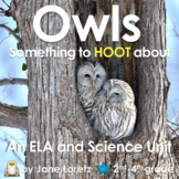 Owls (Something to Hoot About)