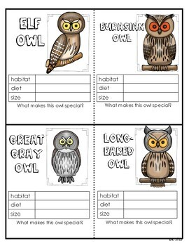 Owls Student Writing and Research Booklet, Trading Cards