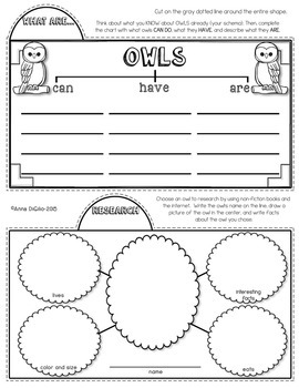 Owls Tab-Its®