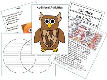 Owls - Science and Literacy Fun