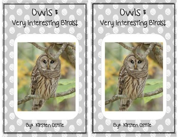 Owls: Very Interesting Birds - differentiated non-fiction student readers