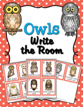 Owls Write the Room