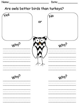 Owls Writing-Informative Opinion Narrative CCSS