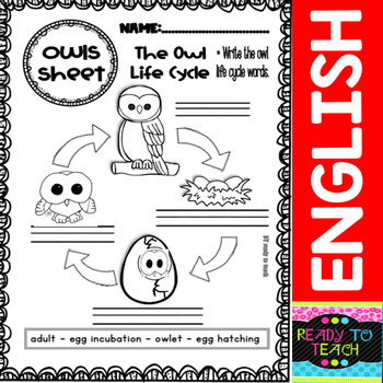 Owls - Writing Sheets, Worksheets and Posters for Science Centers
