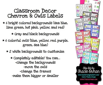 Owls and Chevron Classroom Decor Labels You Can Edit