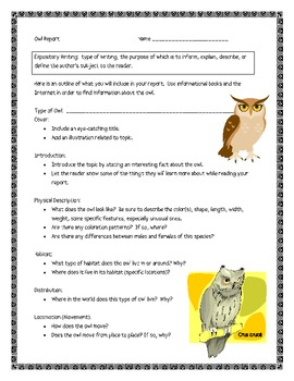 Owls, by G. Gibbons, Comprehension Questions and Project Sheets