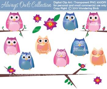 Owls clip art - digital clip art
