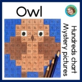 Owls Hundreds Chart Mystery Pictures - primary version