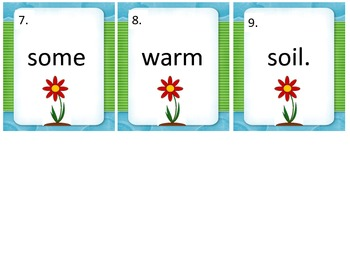 Oy and Oi Write the room.... Plant themed