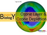 Ozone Layer and Ozone Layer Depletion PowerPoint (free handout included)