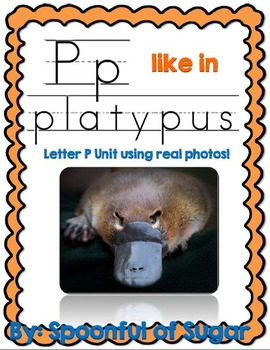 P Like in Platypus (Letter P Unit Using Real Photos!)