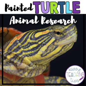 PAINTED TURTLE - nonfiction animal research
