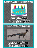 A~SPANISH~I~PALABRAS COMPUESTAS: Building Vocabulary with