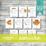 PARTS of a FISH • Montessori Cards • Flash Cards • Three P