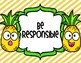 PBIS Pineapple School Expectation Posters
