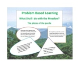 PBL-Problem Based Learning Unit What To Do With the Meadow