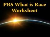 PBS What is Race Worksheet