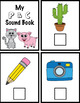PCND Beginning Sounds and Phonemic Awareness Interactive B