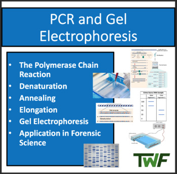 PCR and Gel Electrophoresis - A Senior Biology PowerPoint