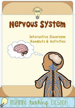 PDF Interactive Nervous System Handouts