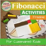PDL's Fibonacci Exploration for Cuisenaire® Rods
