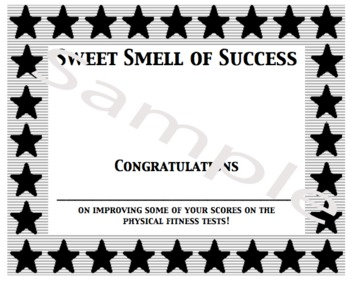 PE Award for Improvement (Mini-Certificate)