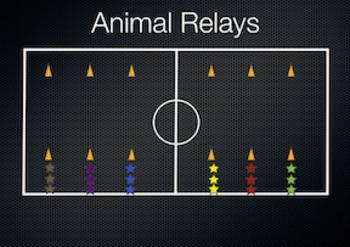 PE Game Video: Animal Relays