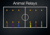 PE Game Video: Animal Relays