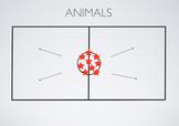 PE Game Video: Animals