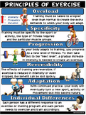 PE Poster: Principles of Exercise
