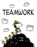 PE Team Building- Lesson Plan