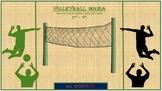 PE VOLLEYBALL MANIA
