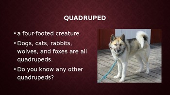 PED Greek and Latin Root Word PowerPoint