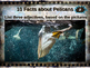 PELICANS: 10 facts, engaging PPT, links, free graphic organizer)
